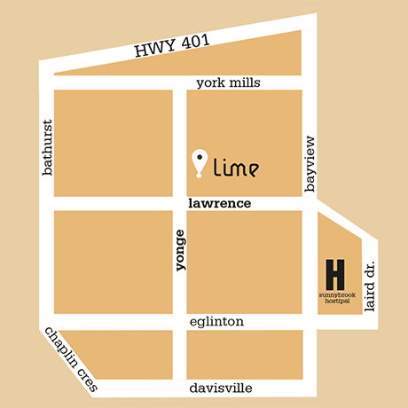 lime Asian Yonge Delivery Map